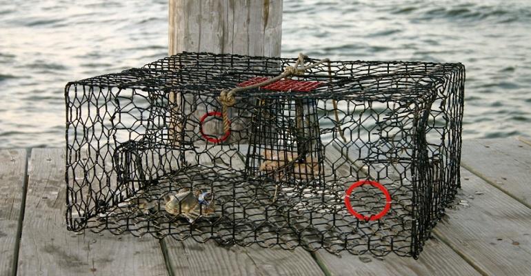 best-crab-traps.jpg