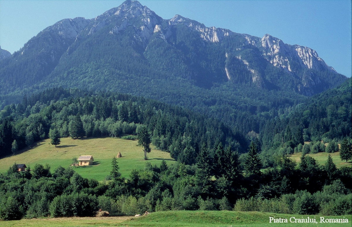 carpathian-mountains-view-piatra-craiului-national-park-romanian-landscape-eastern-european.jpg
