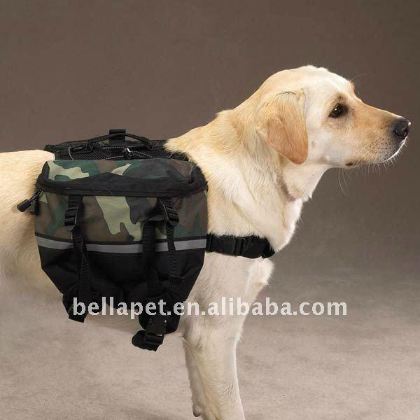 Dog_Carrying_Bag.jpg