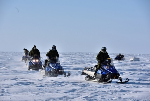 exercise-arctic-bison-2015.jpg