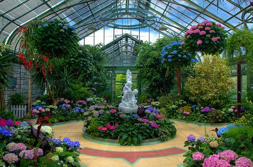 floral-showhouse-header.jpg