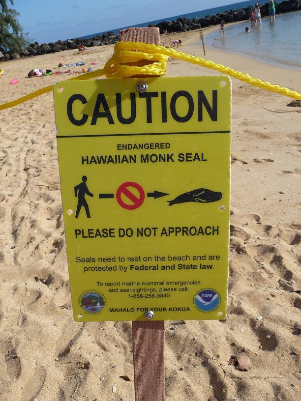 HawaiianMonkSealSign.JPG