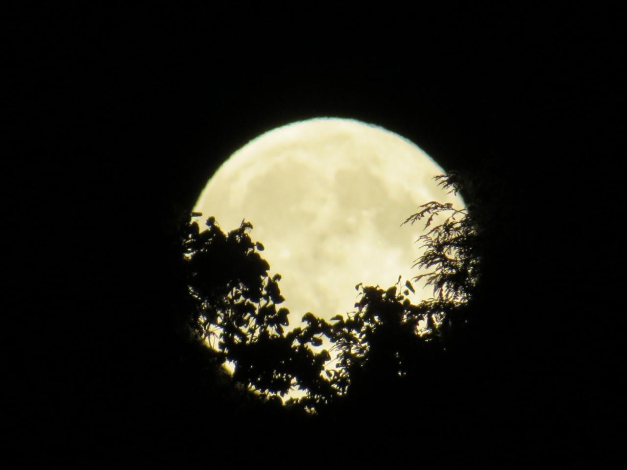 our_moon.jpg