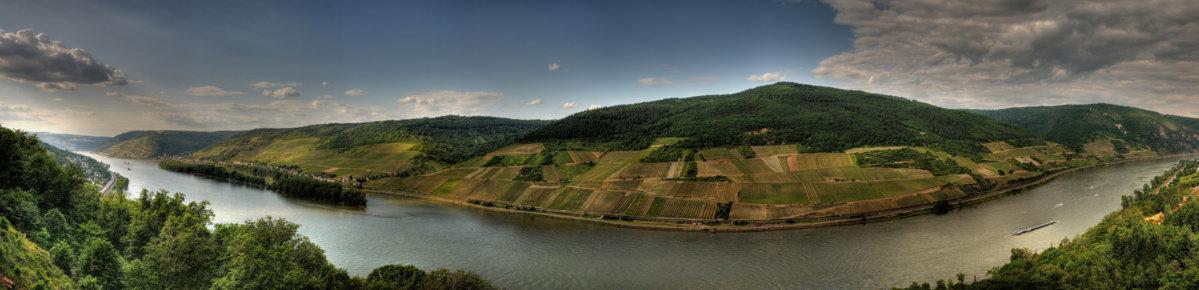 panorama-rheingau-21cde5c1-79c7-4369-bbea-6c4afb18bb05.jpg