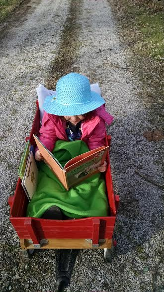 Reading wagon.jpg